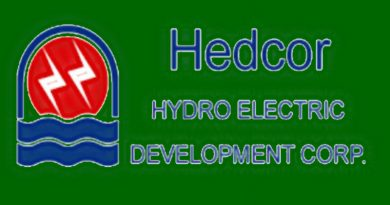Empowered women in Hedcor share stories