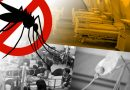 CHSO notes decrease in dengue cases, other diseases