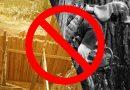 PROCOR'S Makakalikansan drive nets illegal logs