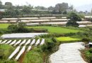 NIA turns over completed irrigation projects to Kapangan farmers