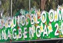 62 exhibitors join Baguio Blooms Exposition