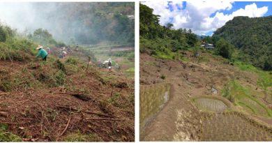SNAP, Banaue LGU restore abandoned rice terraces in barangay