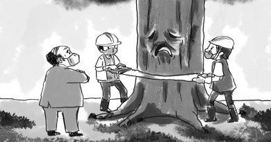 BARKING AT THE WRONG TREE