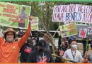 Senate intervention on BENECO impasse sought